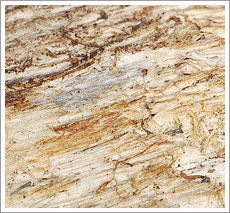 Rough Log Texture